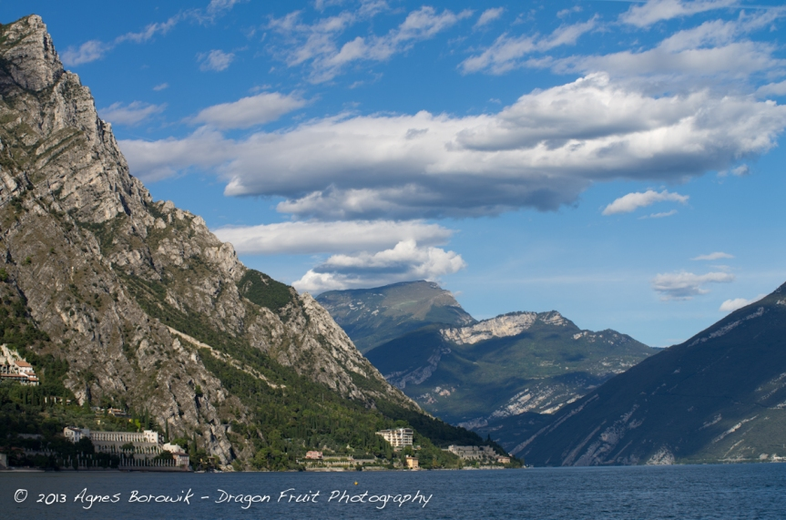 dragonfruit_photography_garda-17