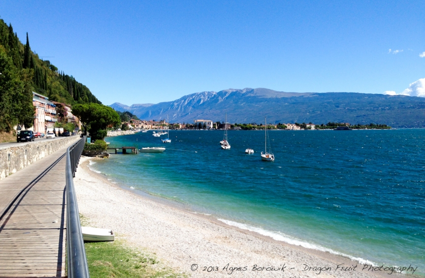 dragonfruit_photography_garda-27