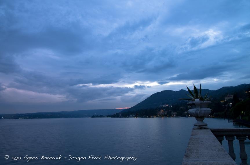 dragonfruit_photography_garda