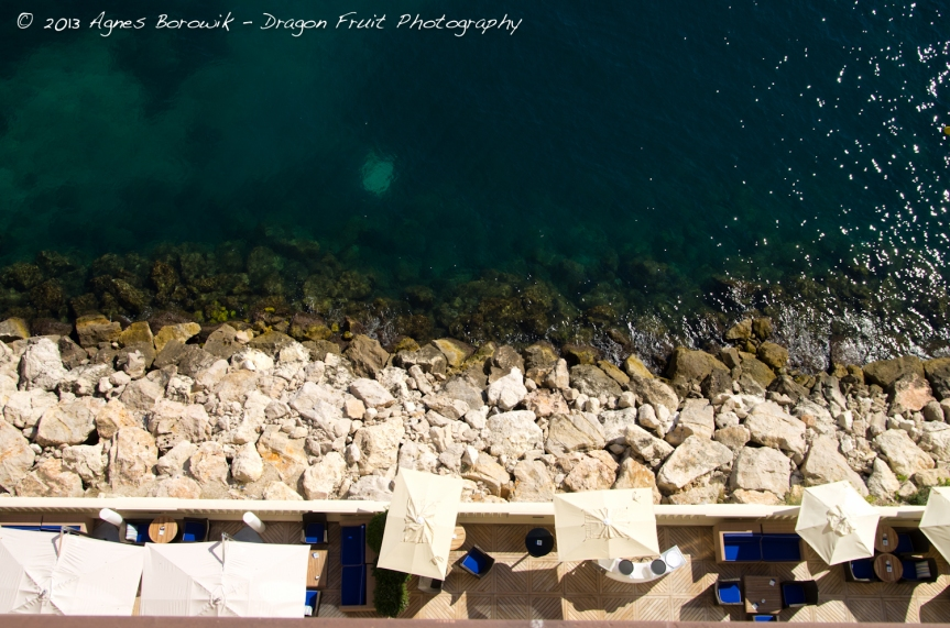 dragonfruit_photography_monaco-13