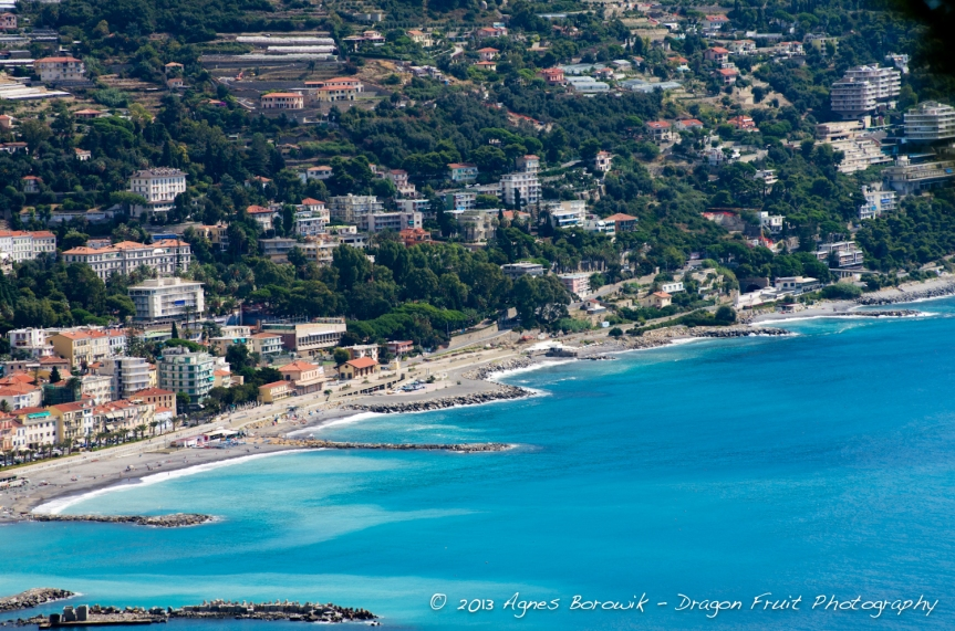 dragonfruit_photography_monaco-16
