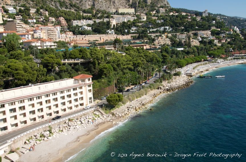 dragonfruit_photography_monaco-19