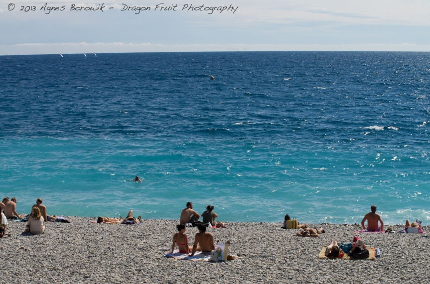 dragonfruit_photography_monaco-20