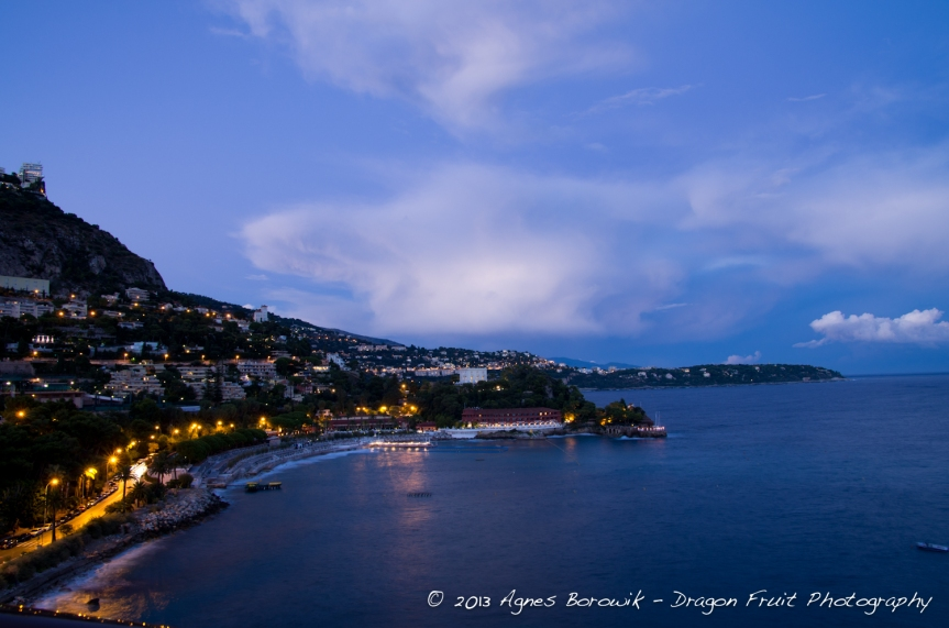 dragonfruit_photography_monaco-8