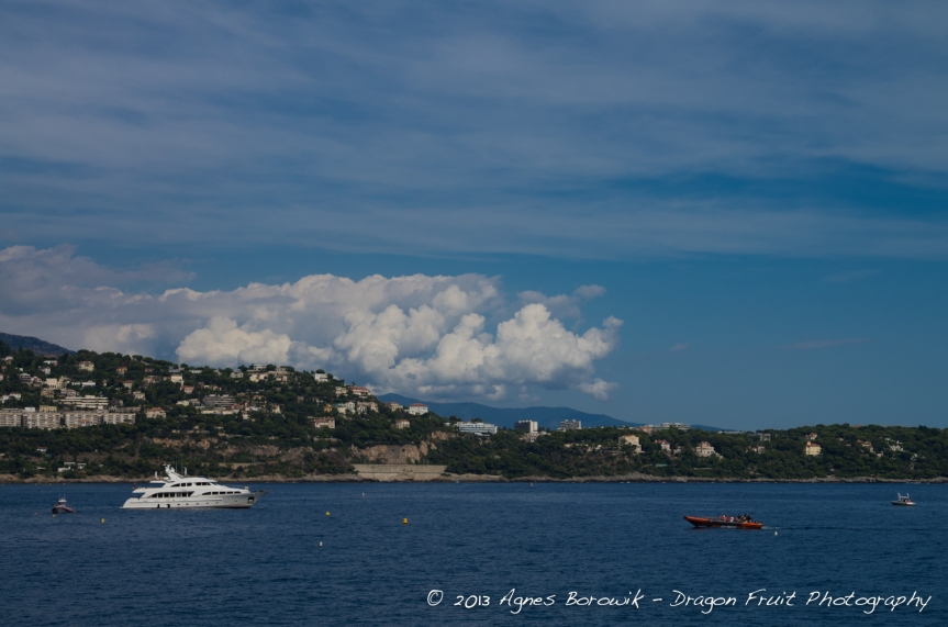 dragonfruit_photography_monaco