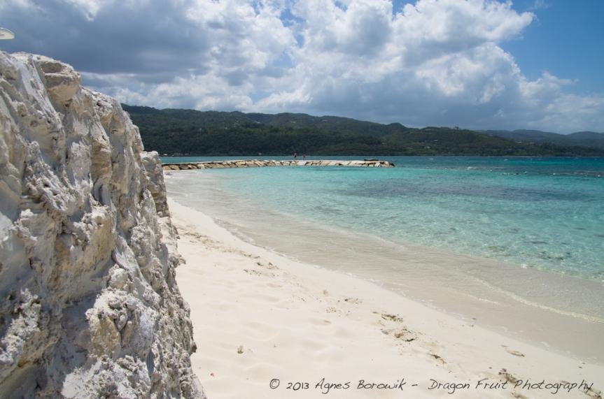 jamaica_agnes_borowik-2