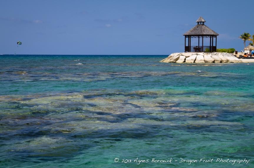 jamaica_agnes_borowik-3