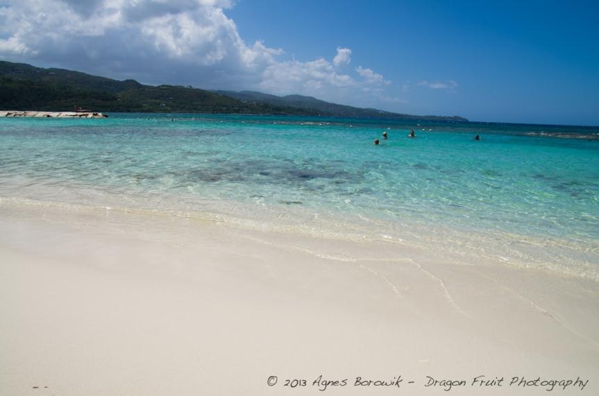 jamaica_agnes_borowik