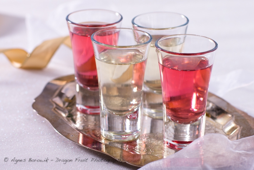 champagne shooters_dragonfruit_photography-3
