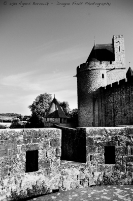 View of the double wall of Carcassonne from a lookout point.
