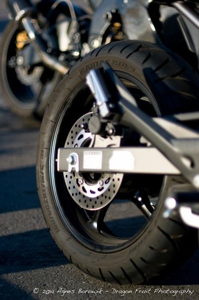 Dragon Fruit Photograpy - Agnes_borowik - motorcycle wheel