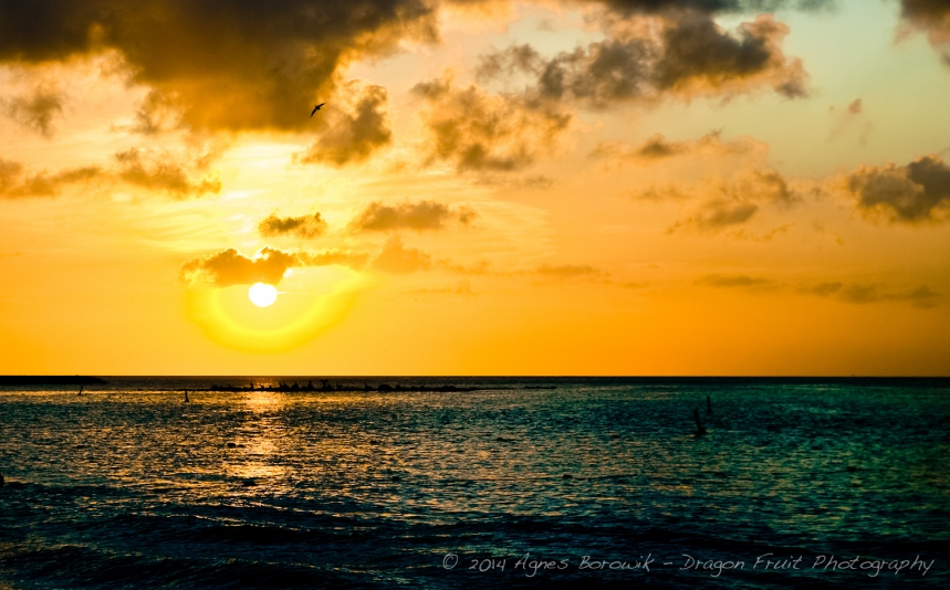 Sunset in Aruba.